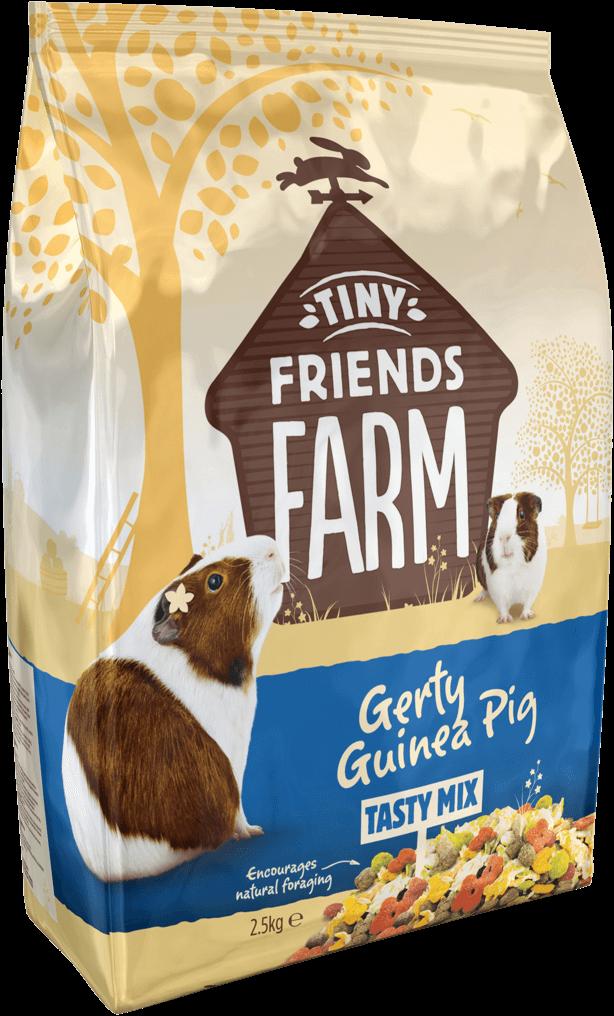 tff-gerty-guinea-pig-side